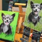 Paint Your Pet's Portrait